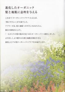 image_0004