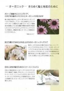 image_0005